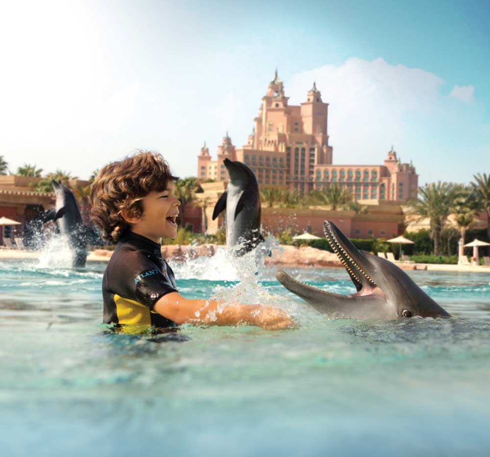marine_and_waterpark_dolphin_bay_08_07_2012_7610hr
