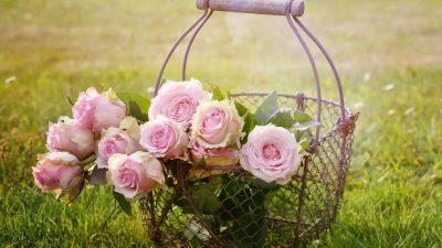 Bouquet da sposa: quali sono gli ultimi trend?